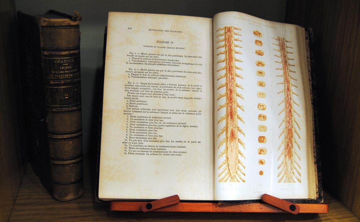 Archivo & Biblioteca